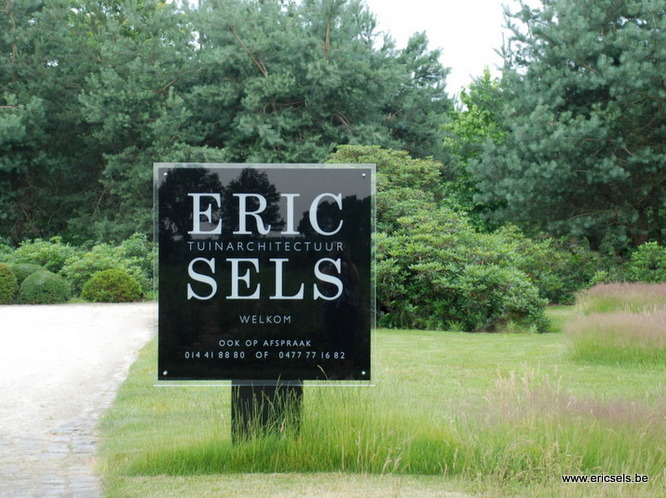 over eric sels (1)